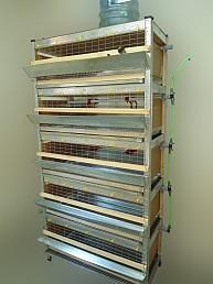Изготовление клеток для птицы, клеточных батарей под заказ по индивидуальным размерам.  Мы учитываем Ваши пожелания к...