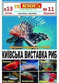 Киевская выставка рыб