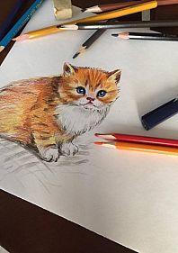 Уроки Скетчинга и живописи