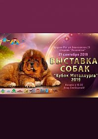 "Выставка собак ""Кубок Металлурга-2019"""