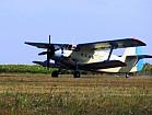 Авіація для десикації посівів