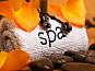 Спа процедуры от салона Sparelax