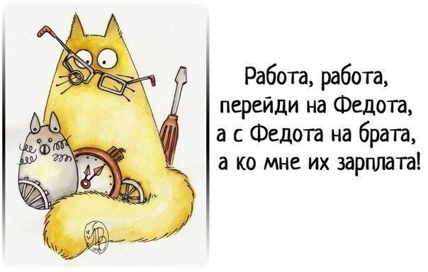 Гифки котята, юмор на работе картинки