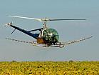 Услуги по десикации подсолнечника вертолетами дронами дельтапланами