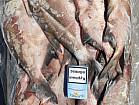 Продам речную охлажденную и с/м рыбу: тарань, лещ, подлещ, густеру, судак, синец, окунь, карась, тол