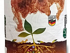 Продам семена подсолнечника, кукурузы, СЗР