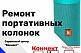 Ремонт портативных колонок JBL, SONY, NOMI, ERGO, PIXUS | НАУШНИКОВ