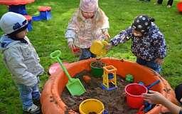 Депутаты хотят озеленить детские садики и школы на 80%