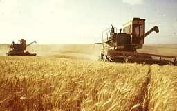 Украина планирует запретить ввоз российского зерна