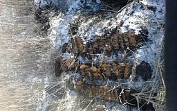 Возле Кривого Рога нашли боеприпасы времен войны