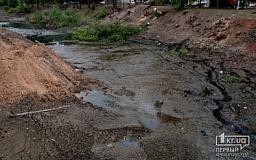 На очистку и водовосстановление русла реки старая Саксагань выделят еще 8 млн гривен