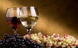 Выпуск вина упал до самого низкого уровня за 40 лет