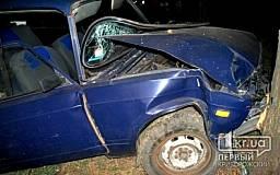 ДТП в Кривом Роге: горе-водитель сбил женщину на тротуаре и припарковался в дерево