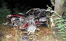 ДТП в Кривом Роге: «Opel» врезался в дерево, развернулся на 180 градусов и загорелся