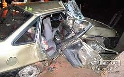 ДТП в Кривом Роге: Daewoo влетела в дерево