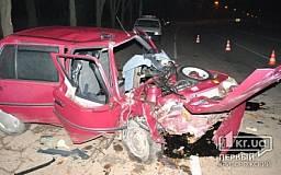 В Кривом Роге водитель «Славуты» на полной скорости влетел в дерево