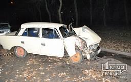 В Кривом Роге 23-летний водитель «Москвича» влетел в дерево