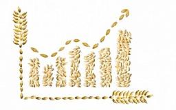 Украина - самый перспективный производитель аграрной продукции в мире,- Присяжнюк
