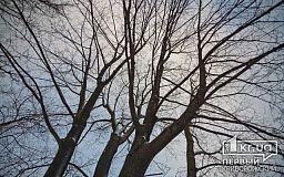 Погода у Кривому Розі на 2 березня