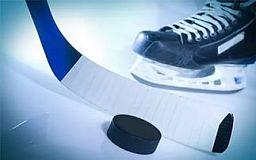 Юные криворожские хоккеисты выиграли у харьковчан