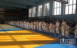 На Чемпионате Украины по джиу-джитсу криворожане заняли призовые места