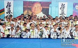 У Кривому Розі відбулися змагання з кіокушин карате