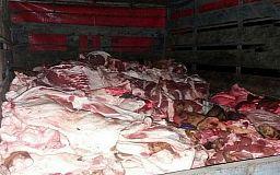 В Кривом Роге водитель перевозил 800 килограммов свинины без документов