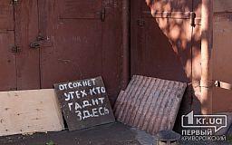 Убрать мусор за нерадивыми земляками призывает заместитель мэра Кривого Рога