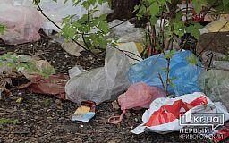 Долой мусор: в Кривом Роге борются со стихийными свалками