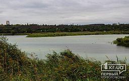 В Кривом Роге планируют устранить угрозу от высоко минерализованных шахтных вод