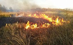 В Днепропетровской области объявлен 5 класс пожарной опасности