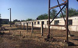 «Один из лучших центров по обращению с животными в Украине», - заместитель мэра Кривого Рога о приюте для бездомных собак