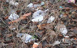 В Кривому Розі з 1 січня 2018 року здорожчає тариф на вивіз сміття