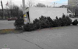 В Кривом Роге торгуют нелегальными елками