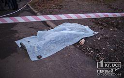 В Кривом Роге трое неизвестных убили мужчину на глазах у горожан (ФОТО 18+)