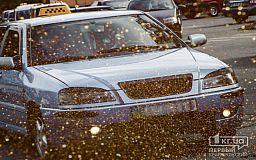 Во сколько обойдется новогоднее такси жителям Кривого Рога