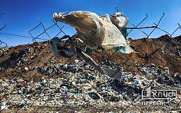Свалка на человеческих костях. Криворожский мусор