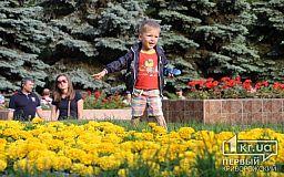 Чорноброві, кохайтеся! Невтішна статистика народжуваності в Україні