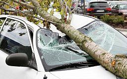 За пошкодження автівки криворіжець хоче притягнути до відповідальності приватного підприємця