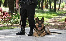 Полицейский пес помог найти сбежавшего в криворожский парк ребенка
