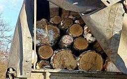Мешканця Кривого Рогу затримали за незаконне перевезення деревини