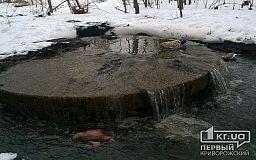 Реку Саксагань пополняют канализационные воды