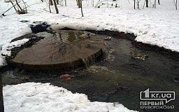 «Річка Саксагань більше походить на резервуар для накопичення каналізаційних вод», - криворізька активістка