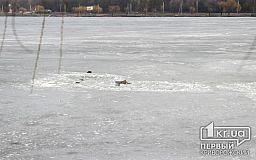 В Кривом Роге под лед провалились четыре рыбака
