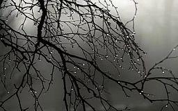 Погода в Кривом Роге на 27 февраля