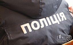 Криворожская полиция задерживает правонарушителей