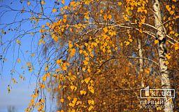 Погода у Кривому Розі на 20 жовтня
