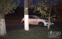 Возле больницы в Кривом Роге авто вылетело на обочину