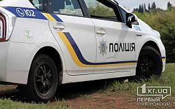 В разных районах Кривого Рога патрульные задержали воров