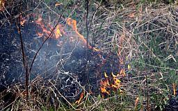 В Кривом Роге сгорела тонна осеннего урожая